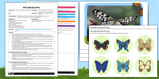 Butterfly Symmetry Matching EYFS Adult Input Plan and Resource Pack - butterfly