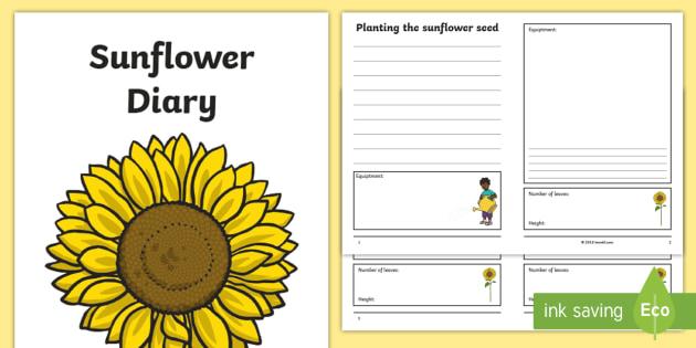 Sunflower Diary Writing Frame Sunflower Diary Writing Frame