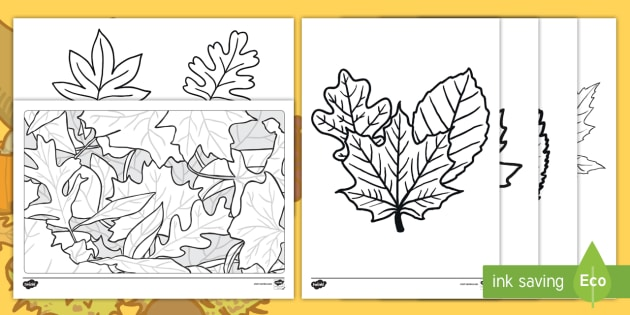 Autumn Leaves Coloring Pages (teacher Made)
