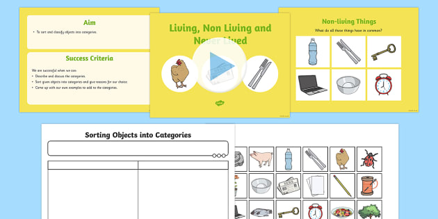 Sorting living things non living things science lesson ccuart