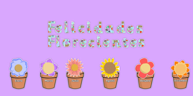 Felicidades Florecientes Blooming Birthdays Flower Display Pack Spanish - spanish, birthdays, display, pack