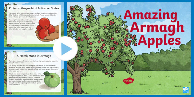 Amazing Armagh Apples PowerPoint - STEM, Thematic Units, Armagh, Bramley, fruit, food, orchards, Northern Ireland, harvest, farming