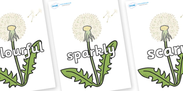 Wow Words on Dandelion-Seeds - Wow words, adjectives, VCOP, describing, Wow, display, poster, wow display, tasty, scary, ugly, beautiful, colourful sharp, bouncy