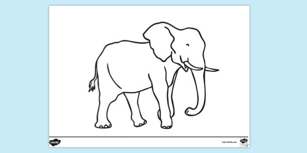 FREE! - Elephant Outline Colouring Page (teacher Made)