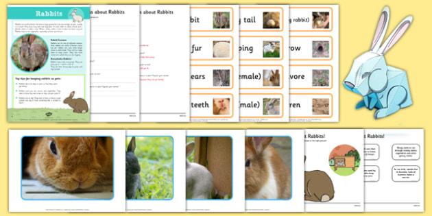 Rabbit Resource Pack - rabbit, resource pack, resource, pack, animals, rabbit resources, bunny rabbit, bunny