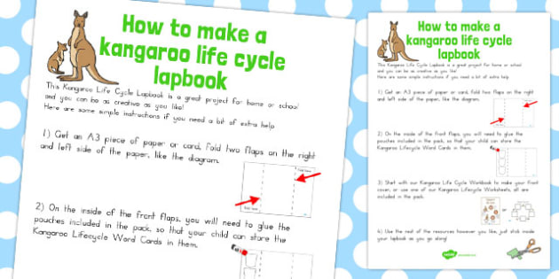 Kangaroo Life Cycle Lapbook Instruction Sheet - australia, sheet