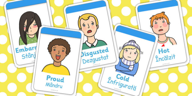 Ourselves Flashcards EAL Romanian Translation - visual aids