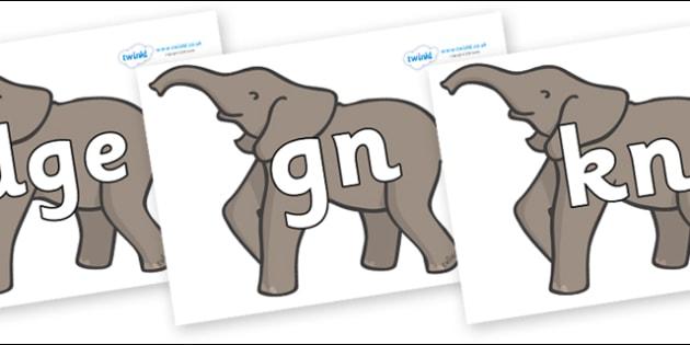Silent Letters on Elephants - Silent Letters, silent letter, letter blend, consonant, consonants, digraph, trigraph, A-Z letters, literacy, alphabet, letters, alternative sounds