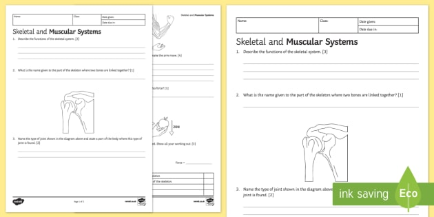 Ks3 Skeletal And Muscular Systems Homework Worksheet Activity