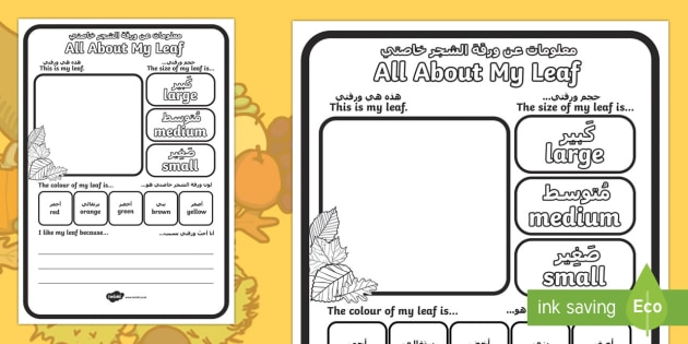 All About My Leaf Worksheet / Activity Sheet Arabic/English