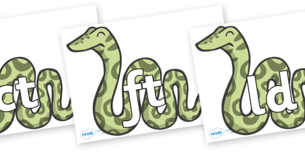 Final Letter Blends on Snakes - Final Letters, final letter, letter blend, letter blends, consonant, consonants, digraph, trigraph, literacy, alphabet, letters, foundation stage literacy