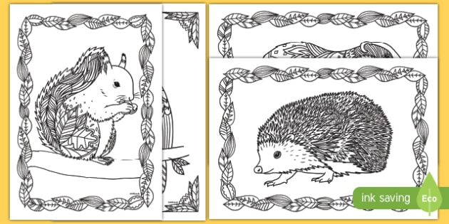 Adult Colouring Mindfulness Autumn Animals Pages