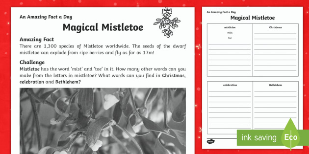Magical Mistletoe Worksheet / Activity Sheet - Amazing Fact Of The Day, worksheet / activity sheets, PowerPoint, starter, morning activity, December, Christmas