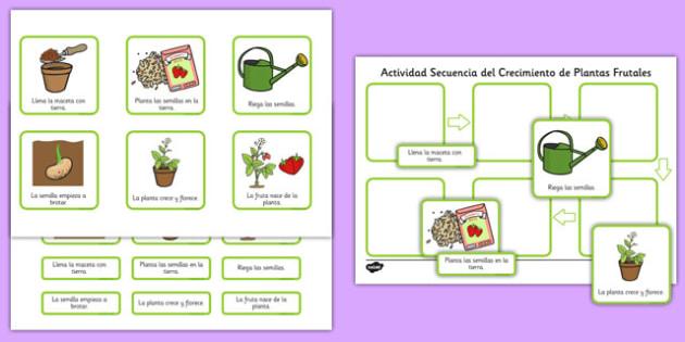 Actividad de secuenciar - el crecimiento de las plantas - semilla, flor, frutal, crecer, ciclo de vida