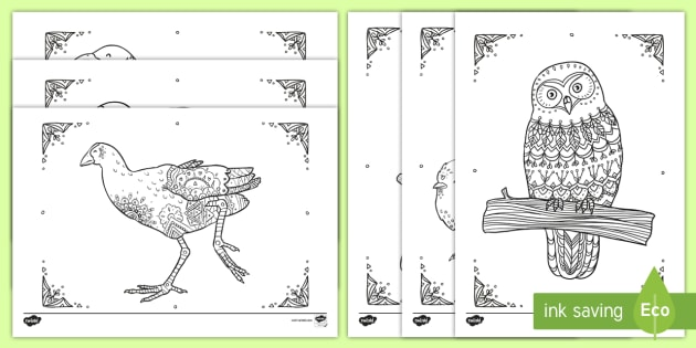 New Zealand Birds Mindfulness Colouring Pages