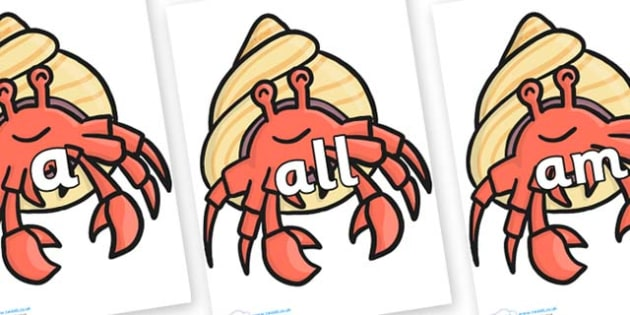Foundation Stage 2 Keywords on Hermit Crabs - FS2, CLL, keywords, Communication language and literacy,  Display, Key words, high frequency words, foundation stage literacy, DfES Letters and Sounds, Letters and Sounds, spelling