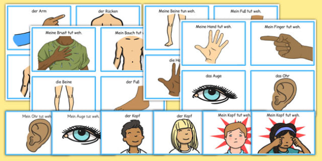 Parts of the Body Communication Cards German - german, parts of the body, communication, cards, flashcards, communicate, discussion, arm, back, tummy, hands, my head hurts