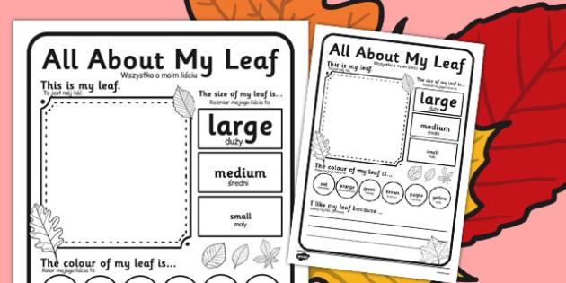 Leaf Worksheet Polish Translation - polish, leaf, worksheet, describe, compare