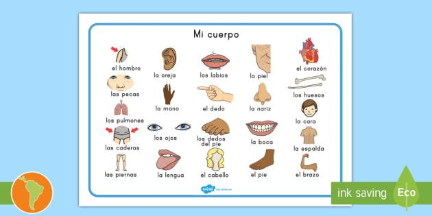 Tapiz de vocabulario: Mi cuerpo - Partes del cuerpo, mi cuerpo
