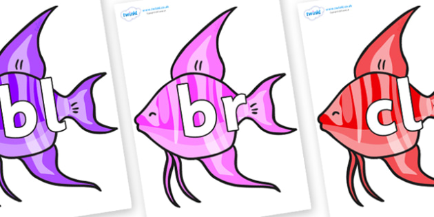 Initial Letter Blends on Angelfish - Initial Letters, initial letter, letter blend, letter blends, consonant, consonants, digraph, trigraph, literacy, alphabet, letters, foundation stage literacy
