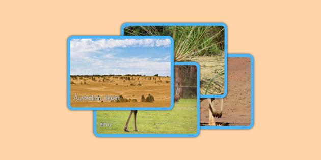 Australian Desert Habitat Photo Display Pack - australia, Science, Habitats, Australian Curriculum, Desert, Living, Living Adventure, Good to Grow, Ready Set Grow, Life on Earth, Environment, Living Things, Animals, Plants, Photos, Photographs, Displ
