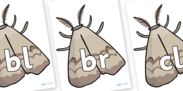 Initial Letter Blends on Insects - Initial Letters, initial letter, letter blend, letter blends, consonant, consonants, digraph, trigraph, literacy, alphabet, letters, foundation stage literacy