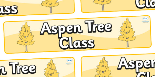 Aspen Themed Classroom Display Banner - Themed banner, banner, display banner, Classroom labels, Area labels, Poster, Display, Areas
