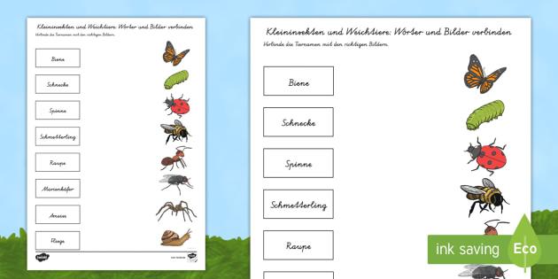 NEW * Kleininsekten und Weichtiere Wörter und Bilder