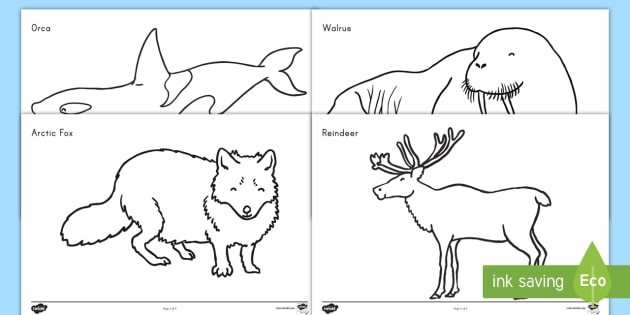 twinkl winter coloring pages - photo#32