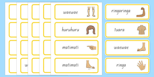 Parts of the Body Topic Words Te Reo Māori - Māori Te Reo, body parts names, nz, new zealand, literacy, writing, words, colouring, body, me, myself, science, ourselves, words