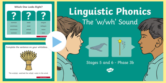 Northern Ireland Linguistic Phonics Stage 5 and 6 Phase 3b, 'w, wh' Sound PowerPoint - Linguistic Phonics, Phase 3b, Northern Ireland, 'w', 'wh', sound, sound search, word sort, inv