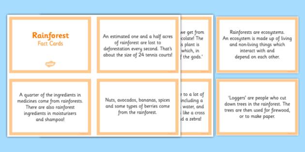 Rainforest Fact Cards - CfE, Social Studies, place, environment