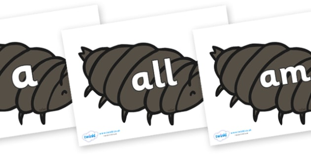 Foundation Stage 2 Keywords on Woodlice - FS2, CLL, keywords, Communication language and literacy,  Display, Key words, high frequency words, foundation stage literacy, DfES Letters and Sounds, Letters and Sounds, spelling