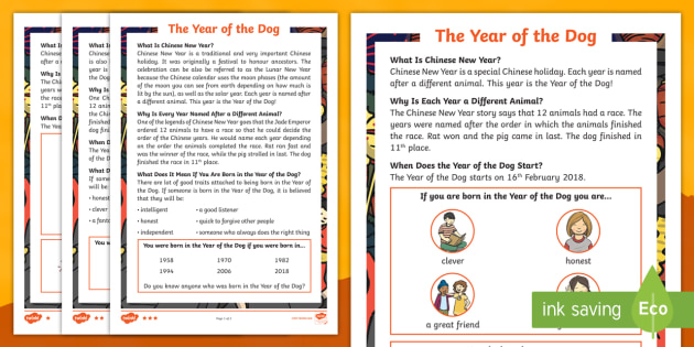 ks1 year of the dog differentiated fact file chinese new chinese new year - Chinese New Year Animal
