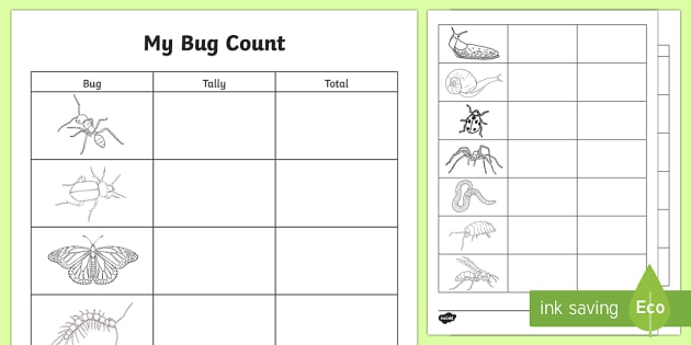Cfe N 104 Bug Count Outdoor Activity Sheet on Minibeast Counting 1