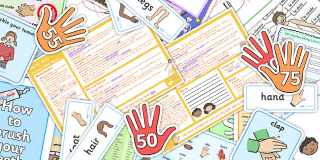 My Body KS1 Lesson Plan Ideas and Resource Pack - lesson plan