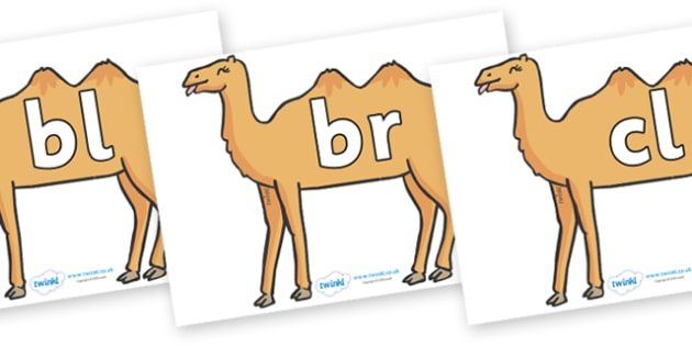 Initial Letter Blends on Camels - Initial Letters, initial letter, letter blend, letter blends, consonant, consonants, digraph, trigraph, literacy, alphabet, letters, foundation stage literacy