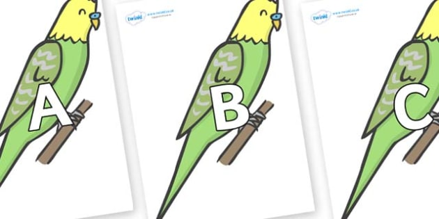 A-Z Alphabet on Budgies - A-Z, A4, display, Alphabet frieze, Display letters, Letter posters, A-Z letters, Alphabet flashcards