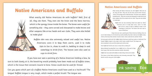 Native Americans and Buffalo Information Sheet-Scottish - Native Americans, buffalo, history,Scottish