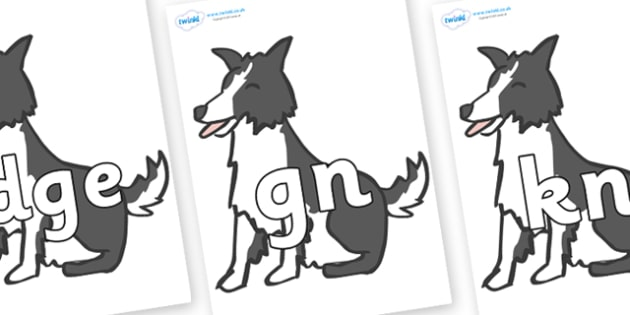 Silent Letters on Sheep Dogs - Silent Letters, silent letter, letter blend, consonant, consonants, digraph, trigraph, A-Z letters, literacy, alphabet, letters, alternative sounds