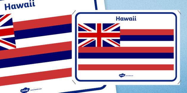Hawaii Flag Display Poster