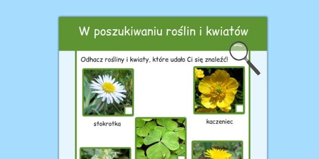 Arkusz W poszukiwaniu roślin i kwiatów po polsku - przyroda