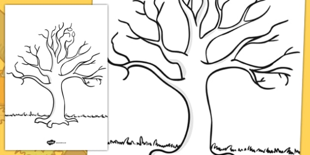 Tree template ks1 nature drawing resources for Plain family tree template