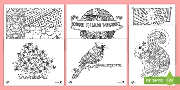 North Carolina State Symbols Mindfulness Coloring Sheets