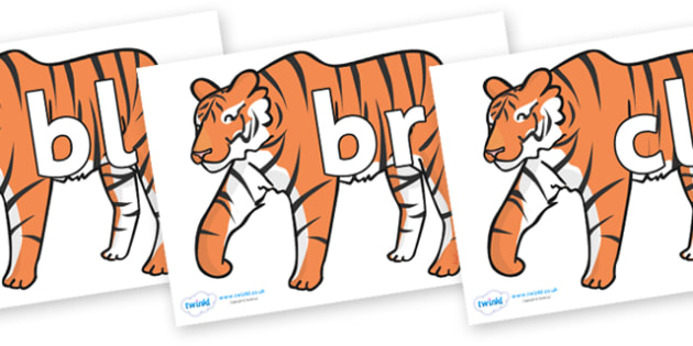 Initial Letter Blends on Tigers - Initial Letters, initial letter, letter blend, letter blends, consonant, consonants, digraph, trigraph, literacy, alphabet, letters, foundation stage literacy