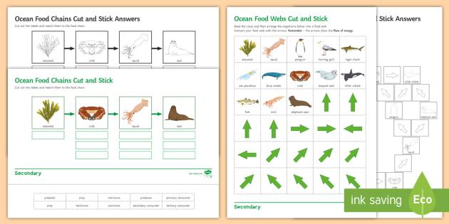 ocean food web cut and stick worksheet activity sheet cut. Black Bedroom Furniture Sets. Home Design Ideas