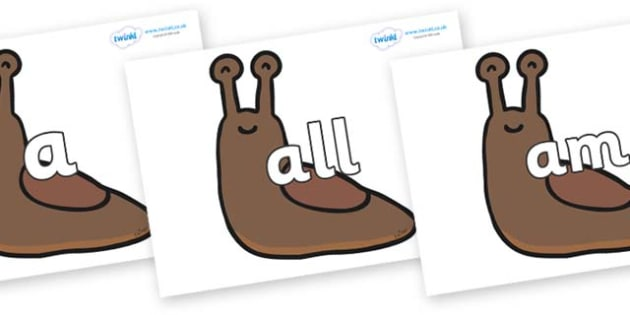 Foundation Stage 2 Keywords on Slugs - FS2, CLL, keywords, Communication language and literacy,  Display, Key words, high frequency words, foundation stage literacy, DfES Letters and Sounds, Letters and Sounds, spelling