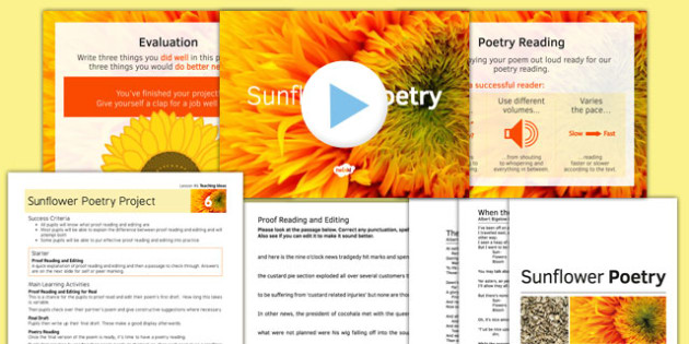 Sunflower Poetry Project Teaching Pack: Lesson 6 - poetry, lesson