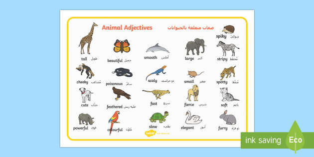 Italian English Animsld: Animal Adjectives Word Mat Arabic/English