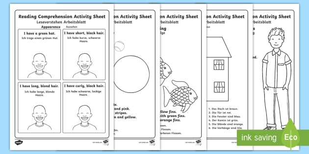 Reading Comprehension Higher Ability Worksheet / Activity Sheets